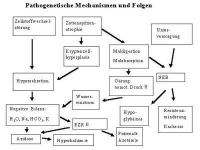metabolische azidose symptome